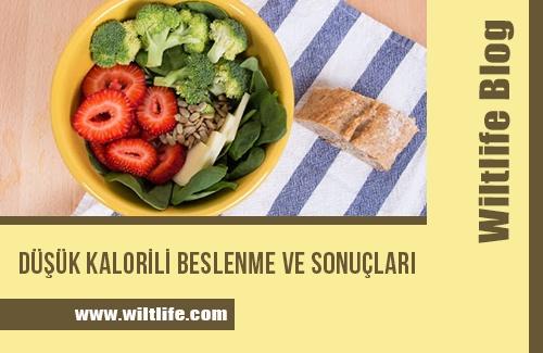 Düşük Kalorili Beslenme ve Sonuçları