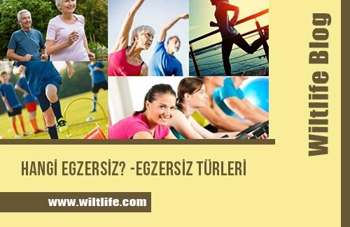 Hangi Egzersiz? Egzersiz Türleri