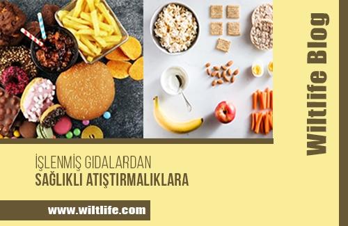 İşlenmiş Gıdalardan, Sağlıklı Atıştırmalıklara