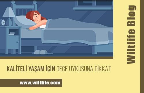 Kaliteli Yaşam İçin Gece Uykusuna Dikkat!