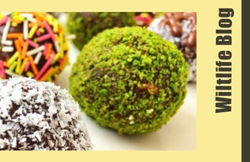 Sweet Fruity Oat Balls