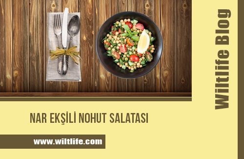Nar Ekşili Nohut Salatası