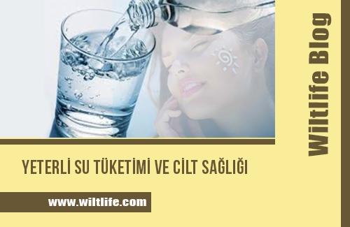 Yeterli Su Tüketimi ve Cilt Sağlığı